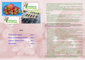 Layman's Report HORTISED eng-2